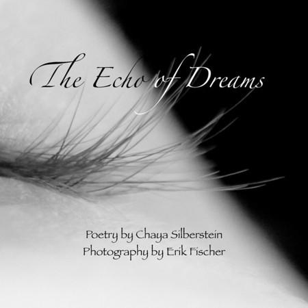 The Echo of Dreams