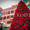 This huge poinsettia tree adorns the Lyceum entrance to the Horton Plaza Shopping Center in downtown San Diego.