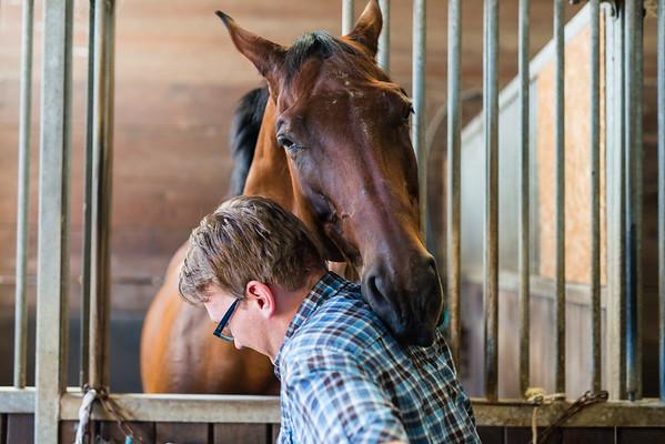 150806 - bei den Pferden