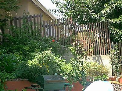 Summer at Grandma's in LA (Summer 2001)