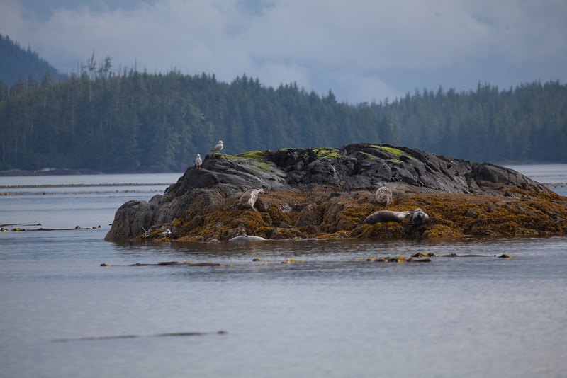 Alaska-122.jpg