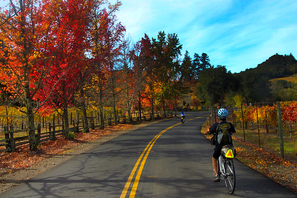 BICYCLING Adventures Along Dry Creek Valley