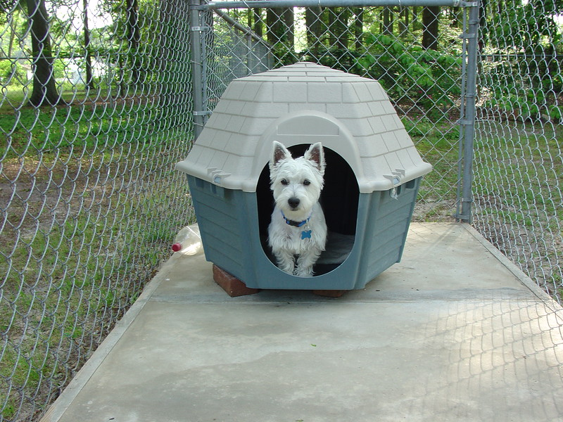 Maggie in her House.jpg
