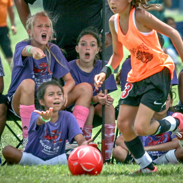 love this pic - the Dragons are obviously not happy with Mia - looks clean, but they reacted as one to something!