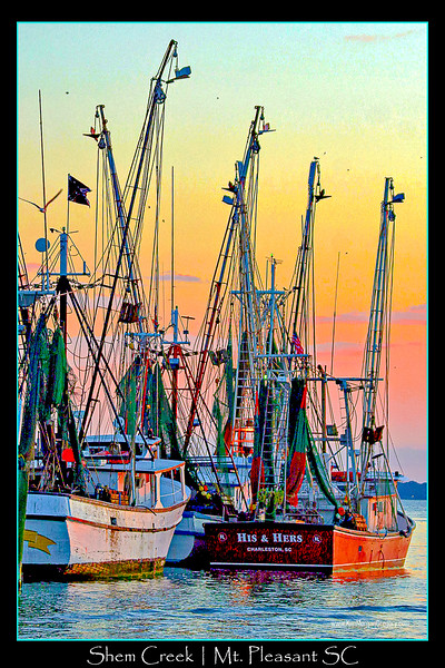 SHRIMP TRAWLERS ON SHEM CREEK