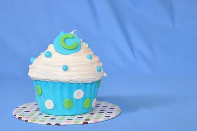 Callen 1 Year Cake Smash