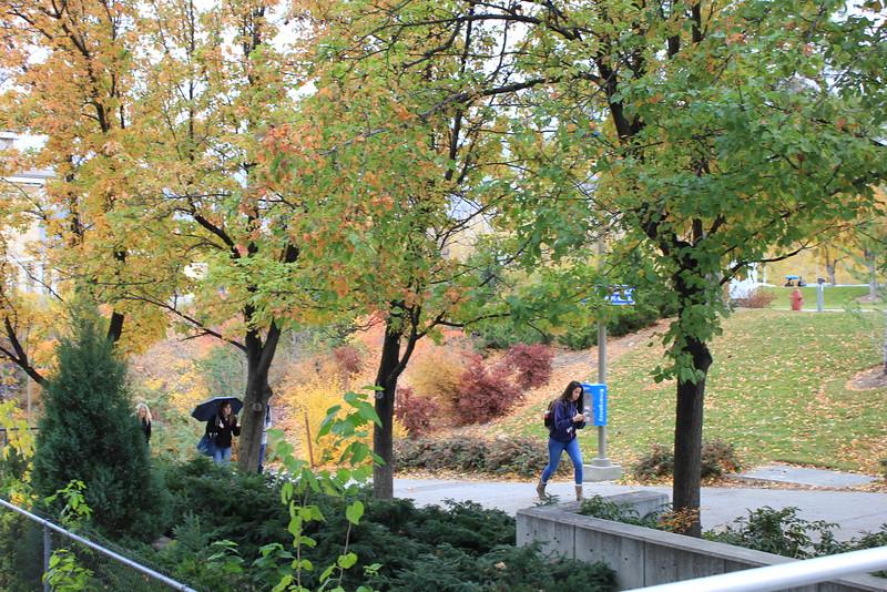 Fall_Scenery_4518.JPG