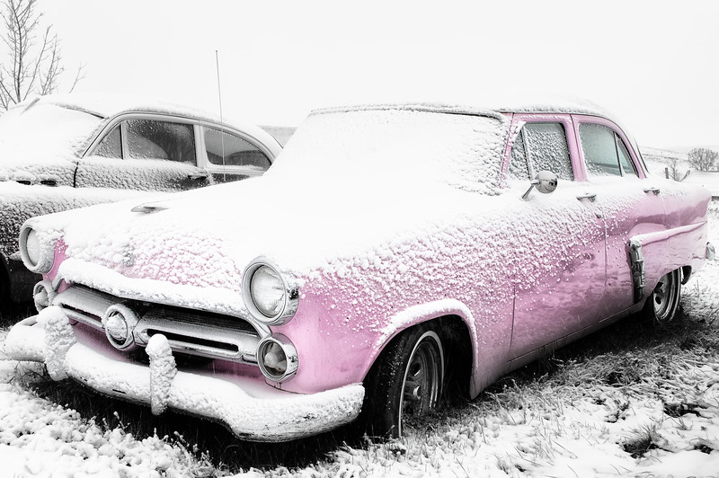 Pink Classic in the Snow