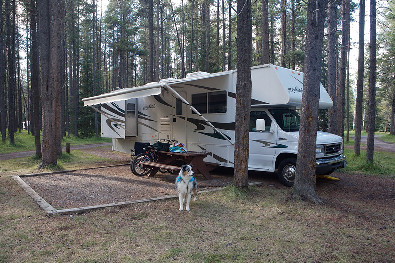 Our motorhome and the family mutt at the campground in Jasper (Whistlers)