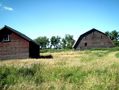 Old barns in summer.