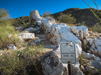 2021-01-16 MSP Quartz Trail