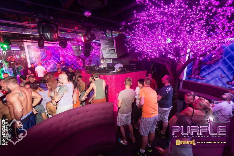 2014-05-11_purple04_045-3257711017-O.jpg