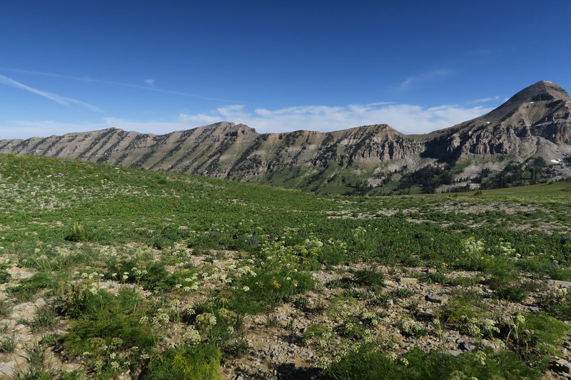 Along the top of Fox Creek Canyon