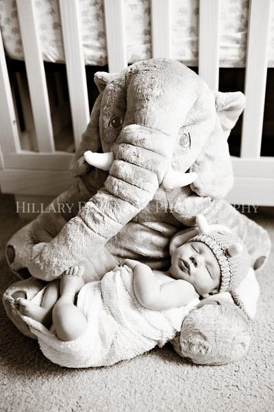 Hillary_Ferguson_Photography_Carlynn_Newborn024.jpg
