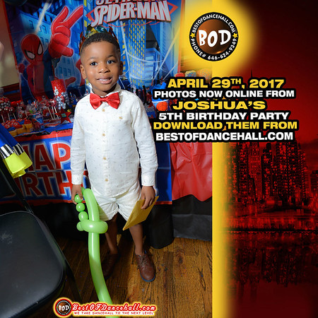 4-30-2017-BRONX-Joshua 5th Birthday Party