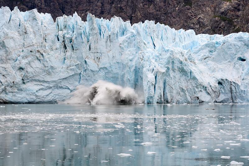 20170819__KT54623_2017-08-19 Alaska Gustavus Glacier Bay 7585.jpg