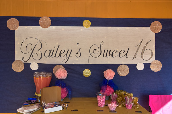 Bailey G Sweet 16 Party