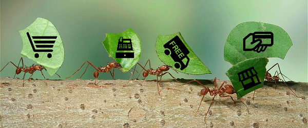 microservices-ants2.jpg