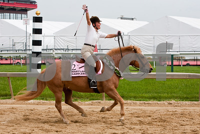 Canter For The Cure