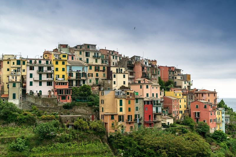 Italy - 2015-1590.jpg