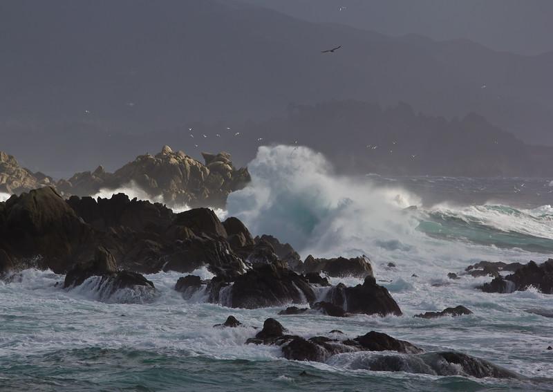 Waves in Carmel
