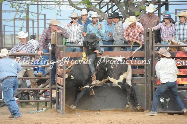 Bulls 4