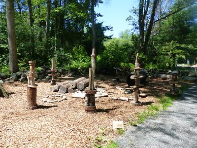North River Nature Camp 2015