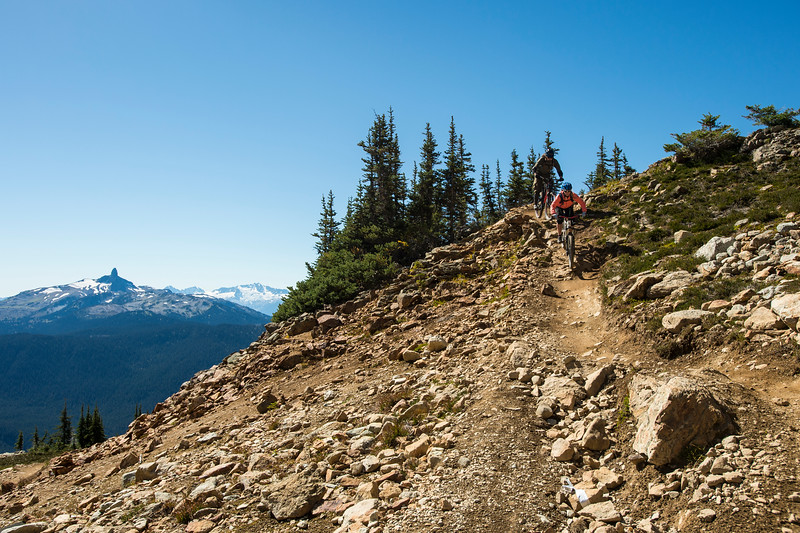 Mountain biking on Whistler mountain, Top of the world trail, Whistler, British Columbia, Canada.