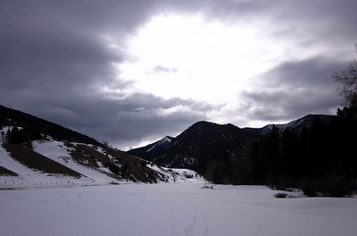 Montana Spring 2011