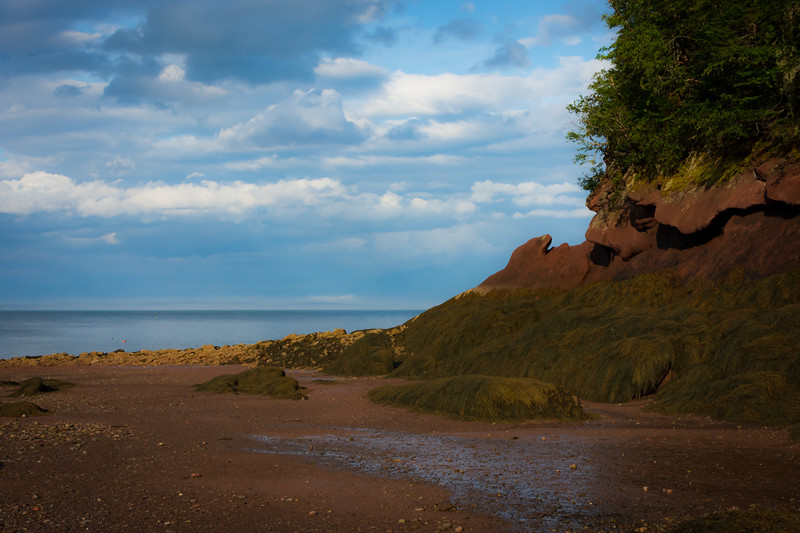 Herring Cove-93.jpg