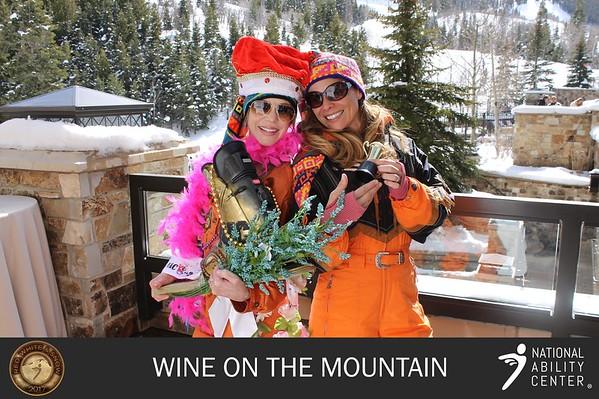 2017 Wine On The Mountain