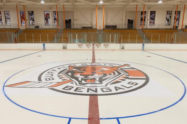 9/11/14 Ice Arena Bengal Logo