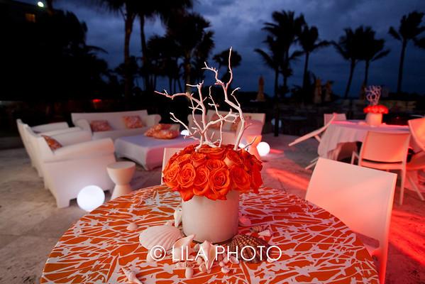 Palm Beach Tropical