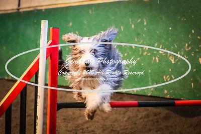 Beginners Jumping Std