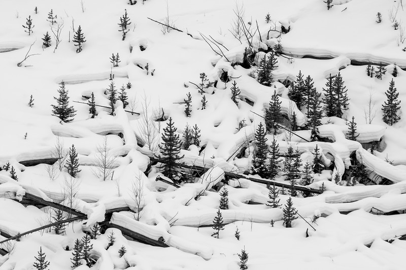 Winter Sticks 3