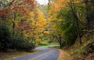 USA, VA - Blue Ridge Parkway