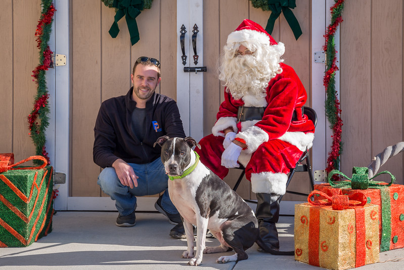 Pet Pictures With Santa-71.jpg