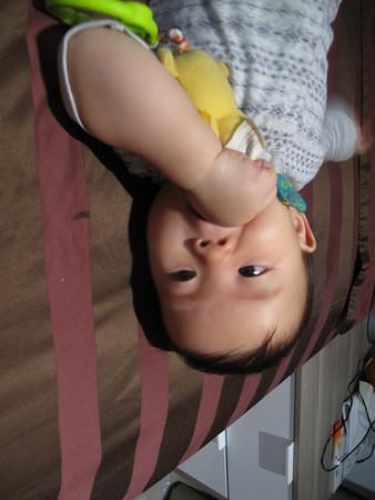 Kin&Kun 8-9 months