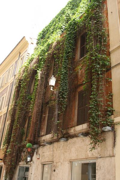 Italy Gianna -   0186.jpg