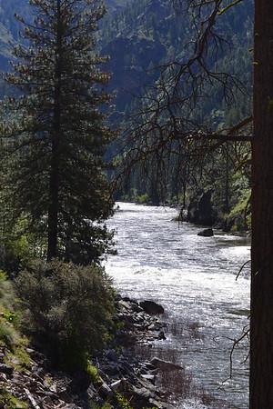 2019 Wild & Scenic Salmon River