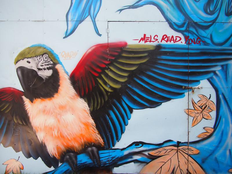 PA144174-street-art-bird.JPG