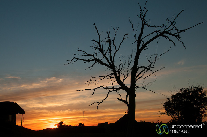Sunset at Buffelsfontein Private Game Reserve - Western Cape, South Africa