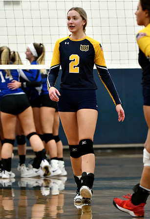 11/16/2019 Mike Orazzi | StaffrWoodstock Academy's Amelia Large (2) during the 2019 State Girls Volleyball Tournament Class L Quarterfinals at BEHS in Bristol Saturday.