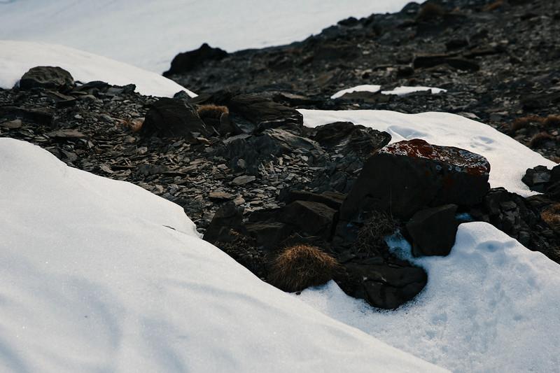 200124_Schneeschuhtour Engstligenalp-21.jpg