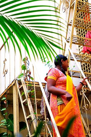 Asha Sadan Jan 15, 2011