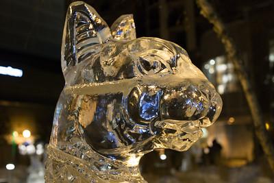 Bloor-Yorkville Icefest - February 2015