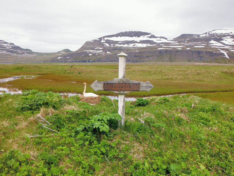 Hér mun hafa staðið bænhús við Höfn í Hornvík