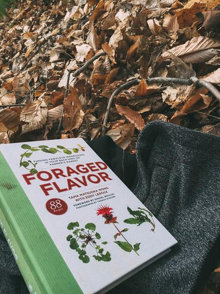 foraged flavour book.jpg