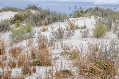 2018 White Sands National Park