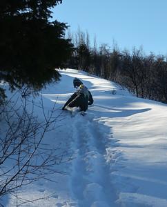 One Snowy Peak